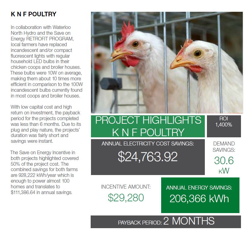 Case Study - Poultry Farms Summary