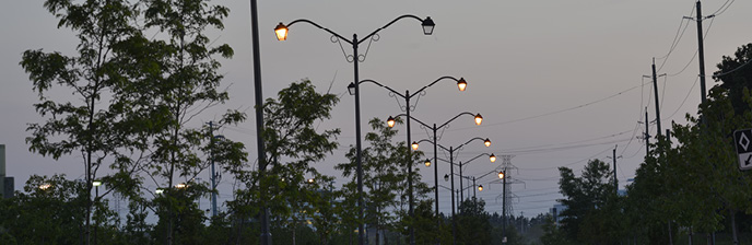 A row of street lights