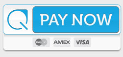Image of Credit Card Payment Screen on Paymentus' Website